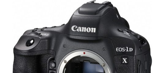 canon eos 1d manual download